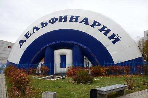 """Дельфинарий, """"освященный"""" священником Святославом Шевченко."""